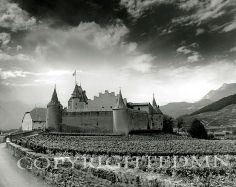 Castle Aigle, Aigle, Switzerland