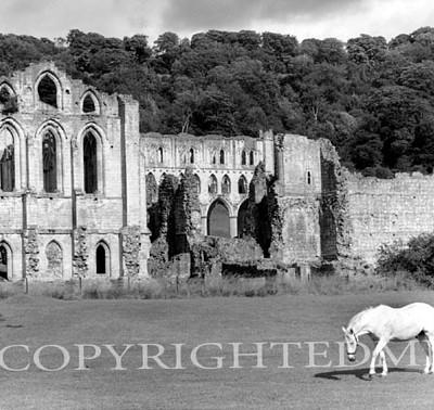 Rievaulx Abbey, Rievaulx, England