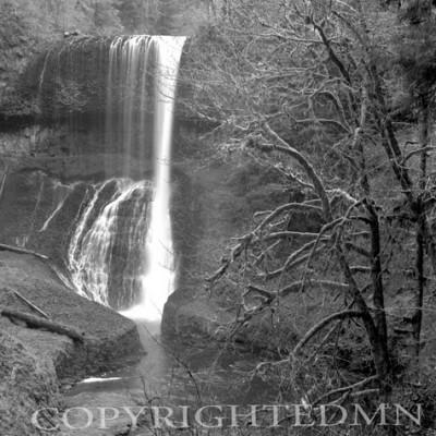 Silver Falls #3, Oregon 92
