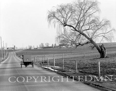 Amish Farm #4, Pennsylvania