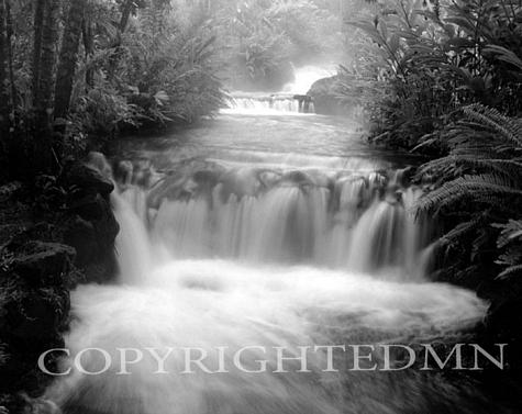 Tabacon Falls, Fortuna, Costa Rica 04