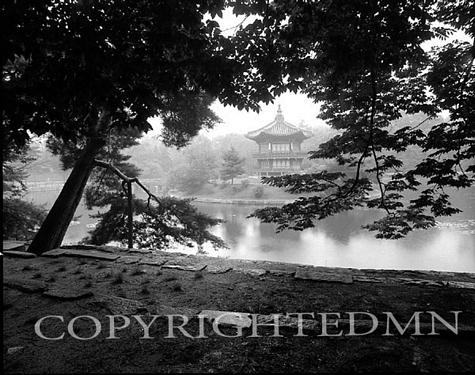 Temple In The Mist, Seoul, Korea 93