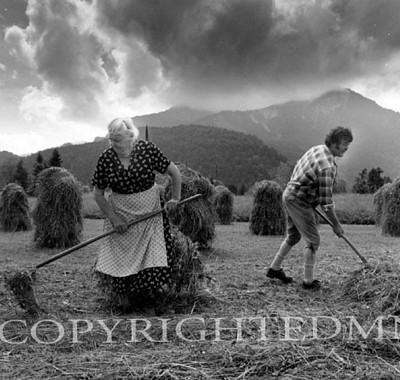 Tending Hay, Austria