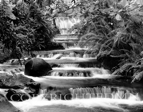 Terraced Falls, Fortuna, Costa Rica 04