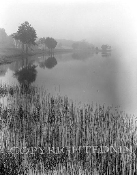 Thatch And Mist, Keewanaw, Michigan