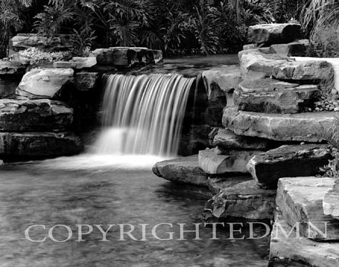 Tropical Falls #3, Florida 98