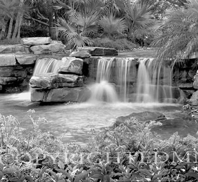 Tropical Falls #4, Florida 98