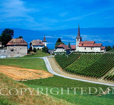 Country View, Avenches, Switzerland – Color