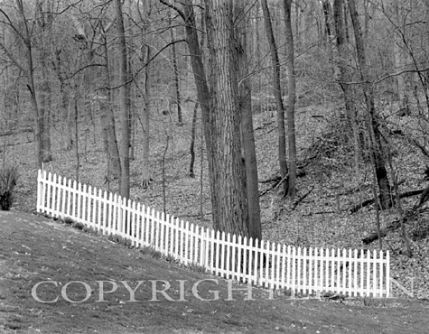 White Fence And Trees, Ohio