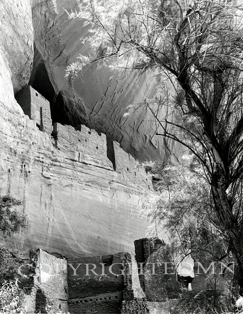 White House Ruins (V), Canyon de Chelly, Arizona