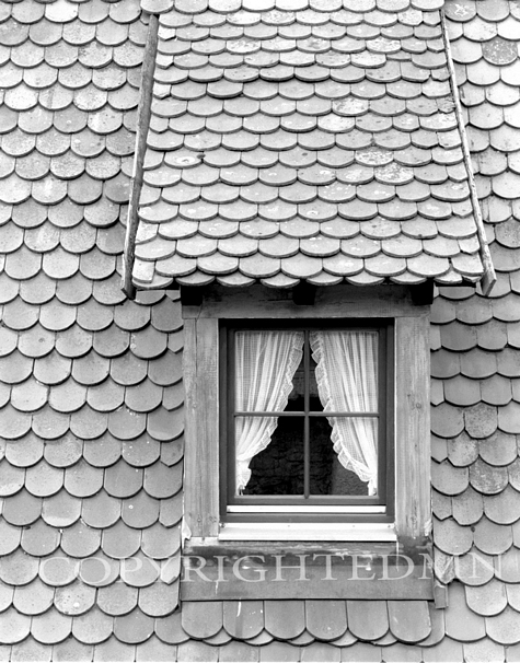 Window & Shingles, England 89