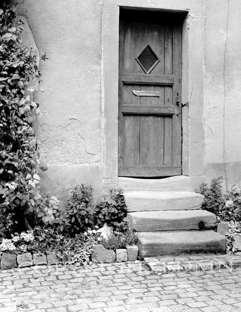 Wooden Door & Steps 87, France