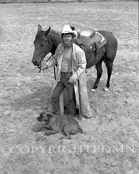 Wrangler, Horse & Dog, Michigan 86