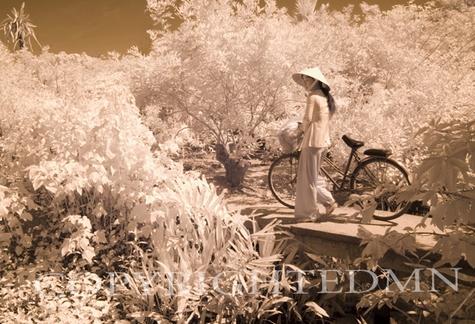 Walking The Bike, My Tho, Vietnam 07 – Monotint
