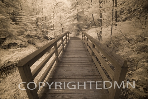 Wooden Bridge IR, Munising, Michigan 08 – Monotint