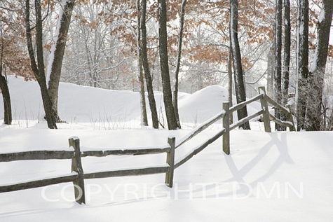 Winter Fence & Shadow, Farmington Hills, Michigan 09 – Color