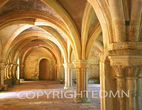 Chapter House, Abbaye de Fontenay, France 99 – Color