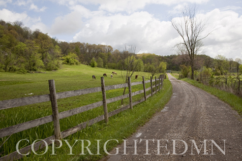 Fence & Country Road, West Virginia 09 – color