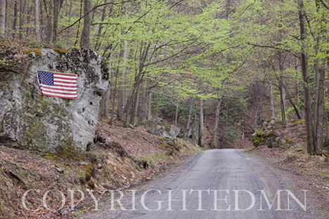 Flag Along the Road, West Virginia 09 – color