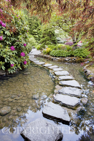Stepping Stones at Butchart Gardens, Washington St. 09 – color