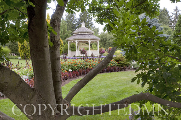 Pagoda through the Tree, Tipton, Michigan 09 – Color