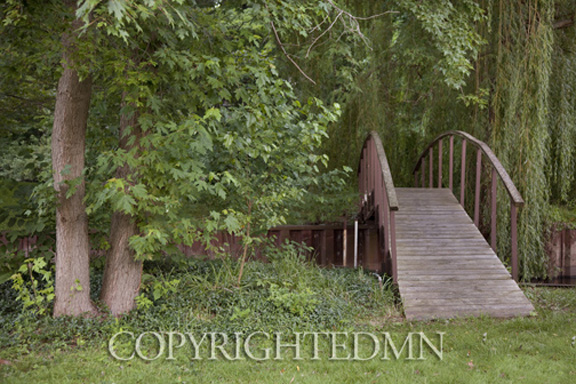 Bridge & Trees, Saugatuck, Michigan 10 – color