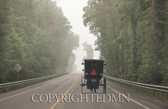 Buggy In The Mist, Shipshewana, Indiana 10 – color