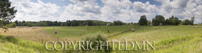 Farm & Field Panorama, Saugatuck, Michigan 10 – color