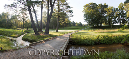 Golf Course Panorama #2, Saugatuck, Michigan 10 – color