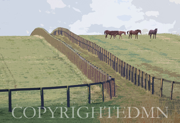 Horses & Fence, Lexington, Kentucky 10 – painterly