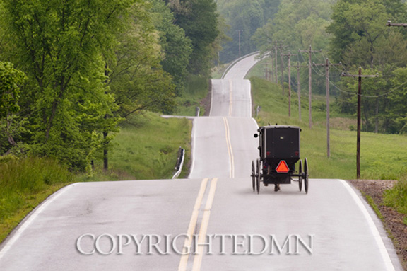 Rolling Road & Buggy, Holmes County, Ohio 10 – color