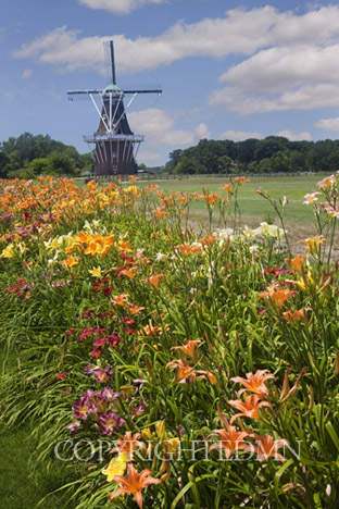 Windmill & Flowers, Holland, Michigan 10 – color