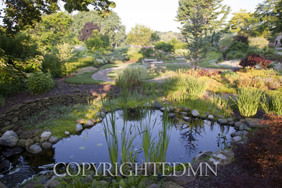 Pond & Garden #1, Saugatuck, Michigan 10 – color