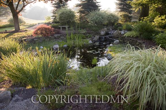 Pond & Garden #2, Saugatuck, Michigan 10 – color