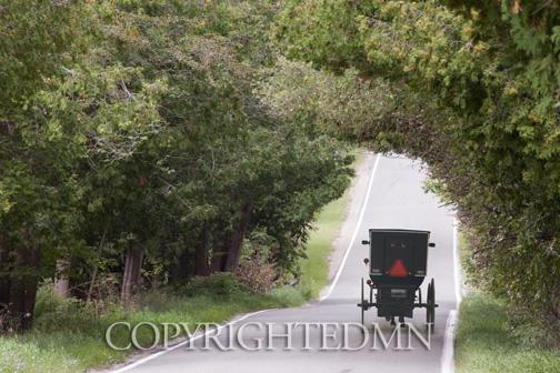 Buggy & Road, Good Heart, Michigan 10-color.jpg