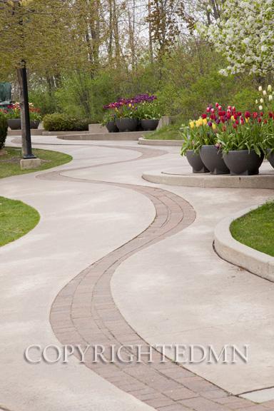 Pathway at Meijer Gardens, Grand Rapids, Michigan 11 – color