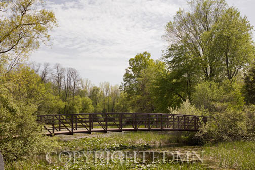 Bridge at Kensington, Milford, Michigan 12 – Color