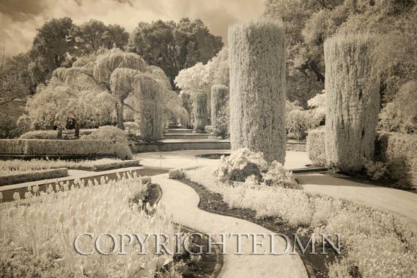 Filoli Gardens, Woodside, California 11 – color