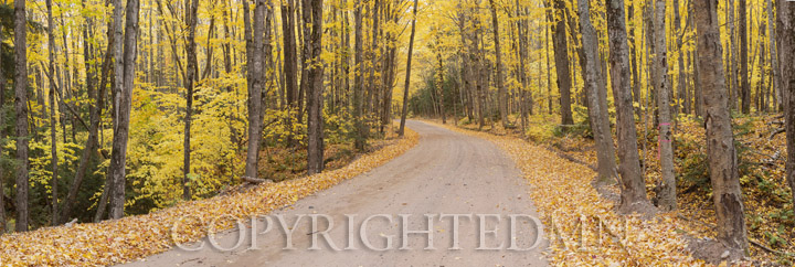 Road In Fall Panorama, Marquette, Michigan 12-color pan