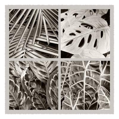 Quartet of Leaves - Geometric