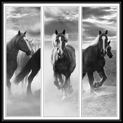 Triptych of Horses - Geometric