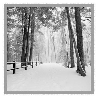 Winter's Path - Geometric