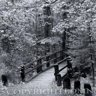 Bridge Post, Sundell, Michigan