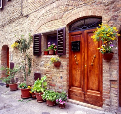 Flowers On The Wall, Tuscany, Italy 06 – Color