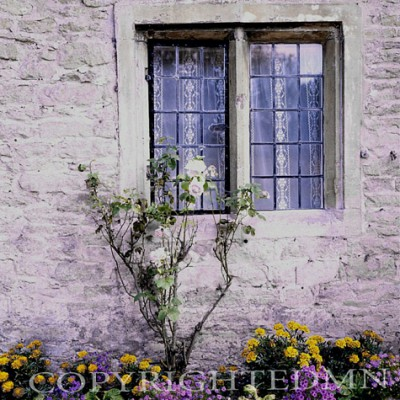 Lace Curtains, Bibury, England – Color