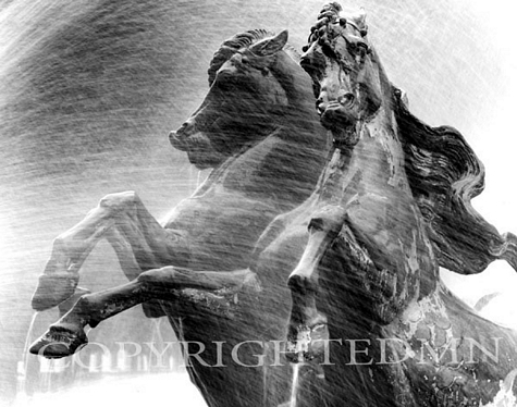 Charging Horses, Paris, France 99