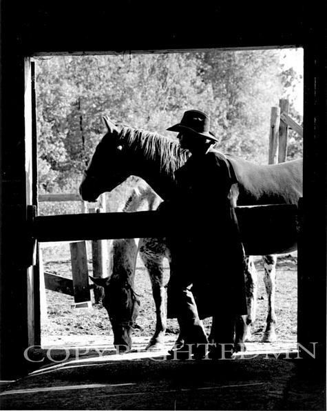 Cowboy Silhouette, Rothbury, Michigan 95