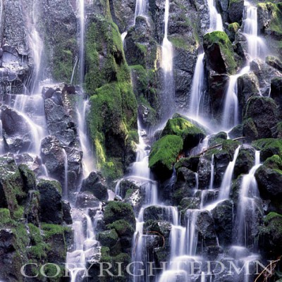 Ramona Falls Details, Zigzag, Oregon – Color