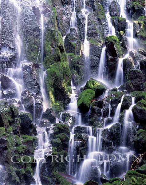 Ramona Falls Details, Zigzag, Oregon – Color