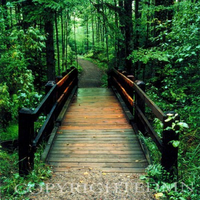 Wooden Bridge, Sundell, Michigan – Color